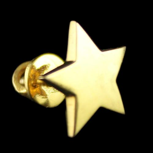 Gold Plated Moon and Star Design Earrings