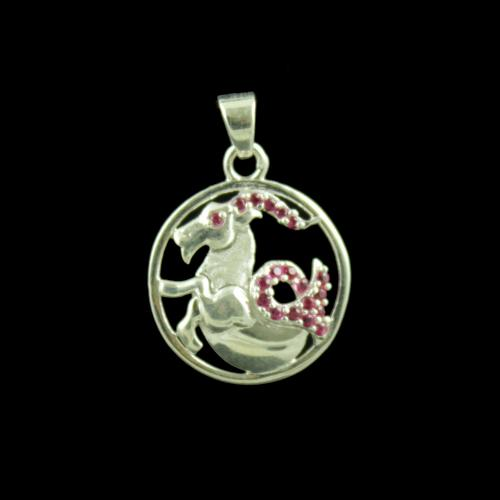 Zodiac Capricorn Sun Sign Silver Pendant With Zircon Stone