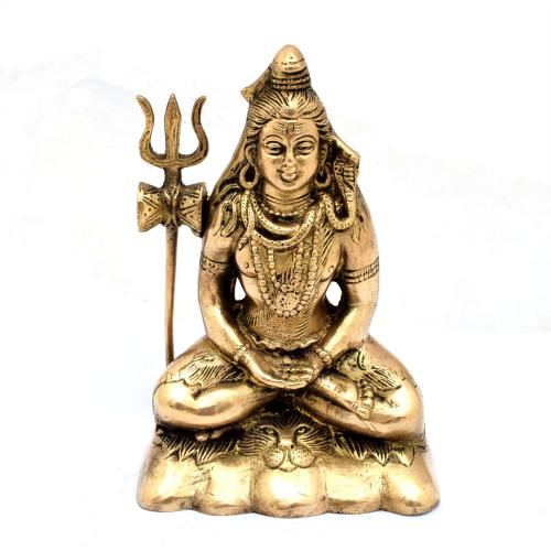 BRS SHIVA DHYANA SITTING ON TIGER SKIN